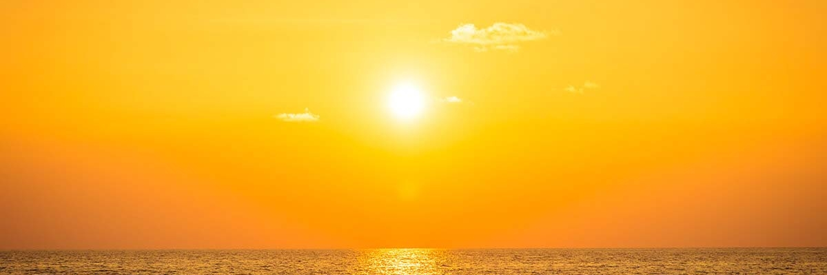 Knowing about the Sunshine Vitamin